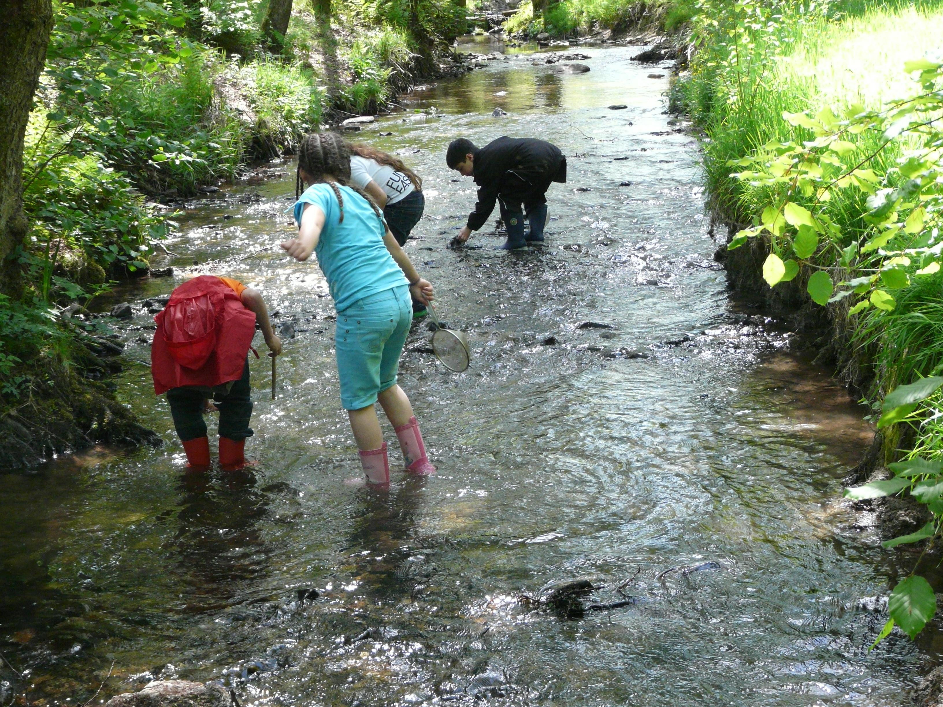 Les secrets du ruisseau pour les maternelles