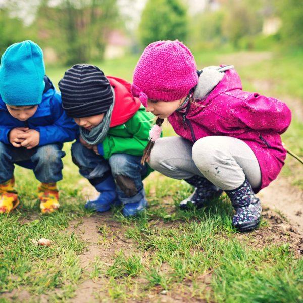 Les Petits Explorateurs à la découverte de l'école du dehors.